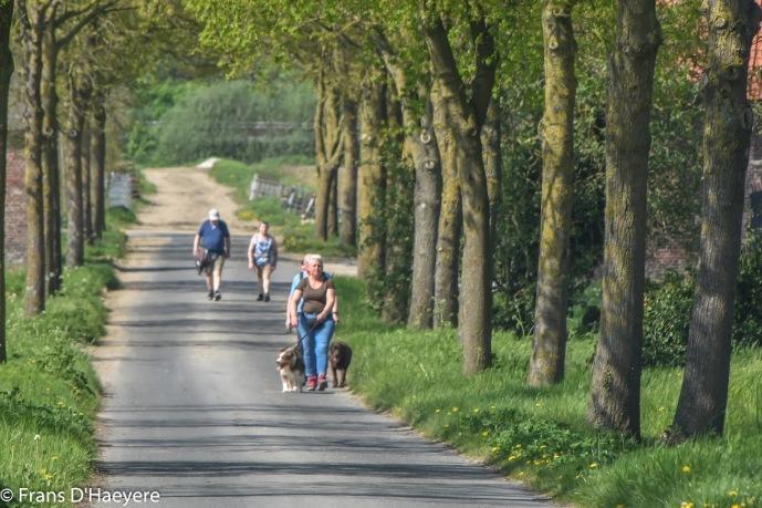 2018-04-22 Sint-Eloois-Winkel-17